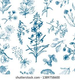 Medicinal herbs seamless pattern indigo. Echinacea, celandine, yarrow, dandelion, calendula, thyme, chamomile, plantain, fireweed, shepherds purse, mint, nasturtium