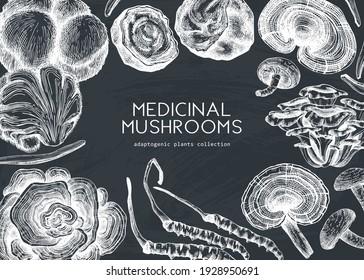Medicinal mushroom design on a chalkboard. Hand-sketched adaptogenic plants frame. Perfect for recipe, menu, label, packaging, medicine. Vintage forest mushroom background. White outlines