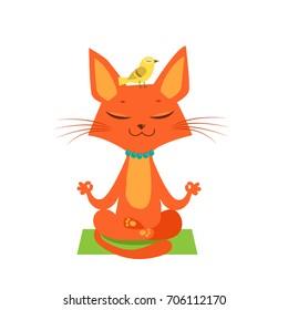Meditating Yoga. Cat Vector. Funny Cartoon Animal Practicing Yoga.Cat Yoga Funny Vector. Yoga pose vector. T-shirt print design.