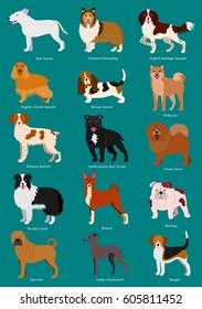 medium dog breeds set with breeds names