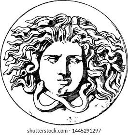 Imagenes Fotos De Stock Y Vectores Sobre Medusa Head