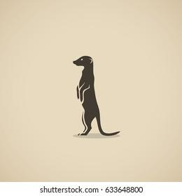 Meerkat - vector illustration