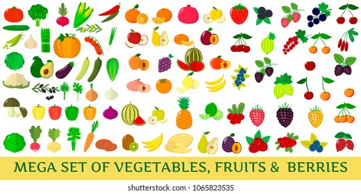Mega set of fresh vegetables, fruits and berries illustrations on a white background.