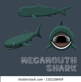 megamouth shark images stock photos vectors shutterstock