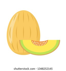 Melon on a white background isolated. Vector illustration