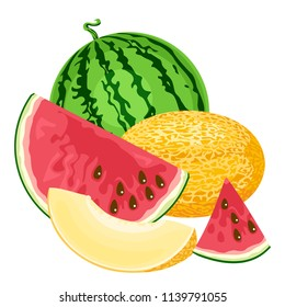 Melon and watermelon vector illustration in flat style. Simple image isolated on white. Template for tag, sticker, icon, label, banner.