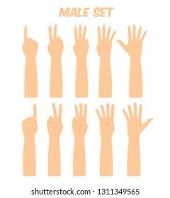 men's hands composing different gestures, showing various finger combinations, vector illustration