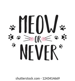 Meow or never. Cute girl slogan. Print for t-shirt. Fashion illustration. Print with cat's paw