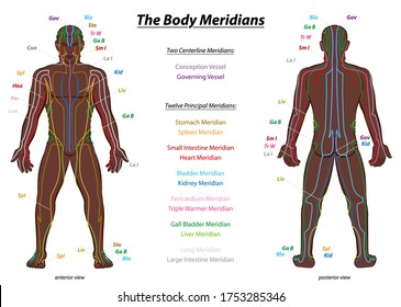 MERIDIAN SYSTEM CHART, black man, male body with labelled meridians - anterior and posterior view - Traditional Chinese Medicine.