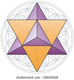 The Merkaba, a double tetrahedron, fits in the Flower of Life, a geometrical figure, composed of multiple evenly-spaced, overlapping circles forming a flower-like pattern with a symmetrical structure