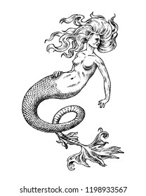 Mermaid woman. Sea siren. Antique Mythical Greek monster. Mythological animal. Ocean symbol. Fantastic creatures in the old vintage style tattoo. Engraved hand drawn old sketch.