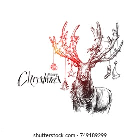 Merry Christmas! Cartoon Style Hand Sketchy drawing of reindeer, vector illustration