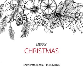 Merry Christmas day backgrounds with line art drawing illustration of poinetsettia, maple leaf, pine, holly