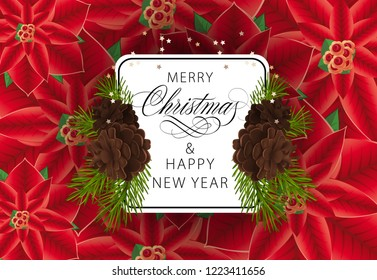 Merry Christmas and Happy New Year  greeting card design. Inscription in white frame with cons and fir tree branches on background with Poinsettia flowers. Can be used for posters, banners, postcards