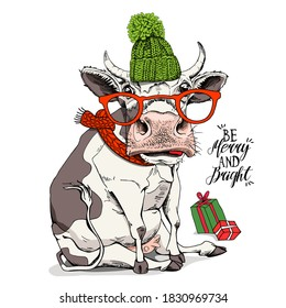 Merry Christmas and New year card. Sitting cow in the green knitted hat, red scarf and in the glasses. Humor t-shirt composition, meme, hand drawn style print. Vector illustration.