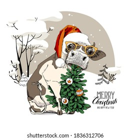 Merry Christmas and New year card. Sitting cow in the red Santa's hat, in the glasses and with the fir tree. Humor t-shirt composition, meme, hand drawn style print. Vector illustration.