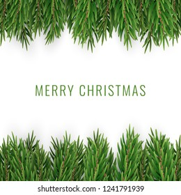 Merry Christmas with Realistic Pine Tree Branches on White Backg