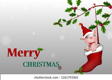 Merry Christmas. Vector Happy smiling pig holding a blank sign. Illustration of a Christmas theme for design. Happy cartoon pig  character for winter, new year holidays, christmas poste