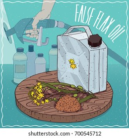 Metal Jerrycan of False flax oil and Camelina sativa plant. Filling at gas petrol station. Natural vegetable oil used for fuel production. Vector illustration