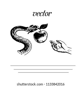 Metaphor from the book The Bible, Snake is holding an apple, silhouette on a white background, vector