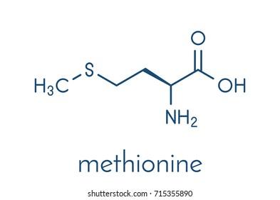 Methionine (l-methionine, Met, M) amino acid molecule. Skeletal formula.