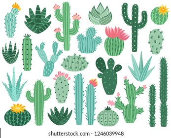 Mexican cactus and aloe. Desert spiny plant, mexico cacti flower and tropical home plants or arizona summer climate garden cactuses and succulent. Flora isolated vector icons collection
