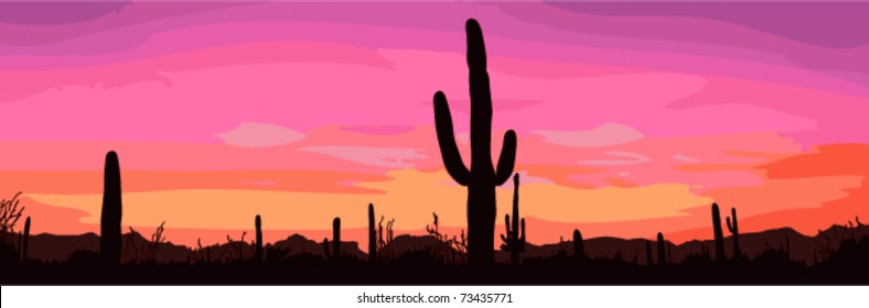 Mexican desert sunset with cactus. Vector illustration.
