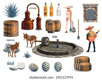 Mexican tequila alcohol drink production process. Vector agave harvesting, cooking in brick oven, extraction with tahona and donkey, fermentation and distillation with pot stills, aging and bottling