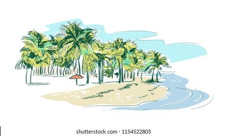 miami palm beach vector sketch landscape line illustration skyline