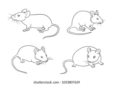 Mice in different posesin contours. Vector illustration. EPS8