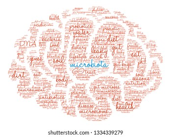 Microbiota affects the brain word cloud on a white background.