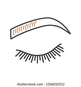 Microblading eyebrows color icon. Eyebrows tinting. Permanent makeup. Brows shaping by tattooing. Pigment application. Isolated vector illustration