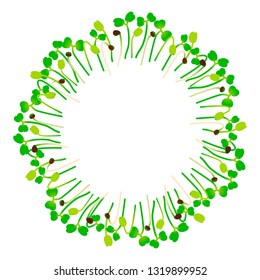 Microgreens Arugula. Arranged in a circle. Vitamin supplement, vegan food