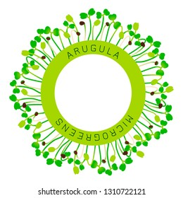 Arugula Seedlings Images, Stock Photos & Vectors | Shutterstock