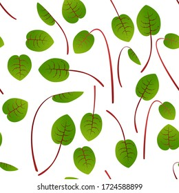 Microgreens Sorrel. Sprouting seeds of a plant. Seamless pattern. Vitamin supplement, vegan food.