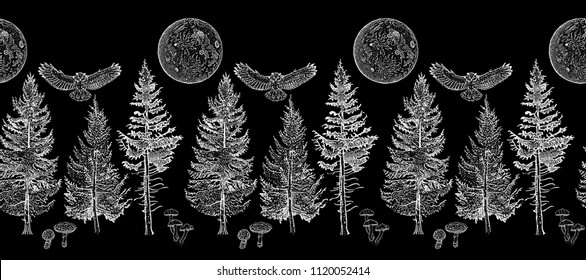 Midnight forest seamless border ornament: spruce, fir tree, mushroom, owl, full moon. Endless horizontal pattern brush. Elements for invitation, greeting card, poster design, decoration, textile print