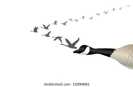 Migrating Geese. EPS 8 vector, grouped for easy editing. No open shapes or paths.
