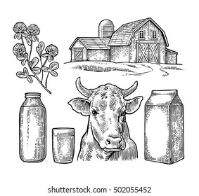 Milk farm elements set. Cow head, clover, carton, glass and bottle. Vector engraving vintage black illustration. Isolated on white background.