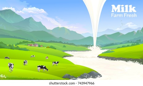 Milk flowing while the cows are grazing