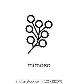 Mimosa icon. Trendy modern flat linear vector Mimosa icon on white background from thin line nature collection, editable outline stroke vector illustration