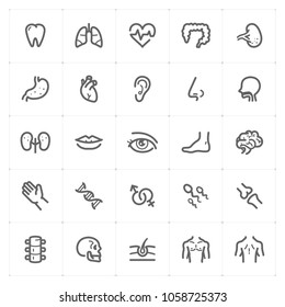 Mini Icon set – Human Anatomy icon vector illustration on white background