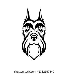 Miniature schnautzer face - isolated vector illustration