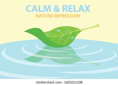 Minimal colorful shaded infographics of a fresh floating leaf with raindrops upon and reflection above the water's surface that convey calmness and relaxation from the nature impression