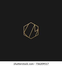 Minimal and Creative Unique Style  LM or ML initial based black and gold color logo