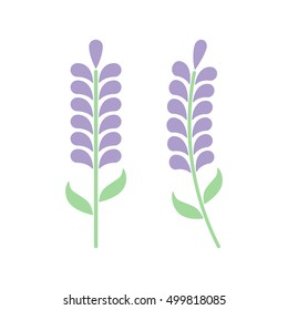 Minimal lavender with leafs isolated on white background. Lavender icon or logo. Vector illustration. Abstract flowers in flat style. Lavender flower
