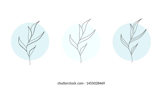 Minimalism stylish outline leaves flowers, trees, branches. Modern design. Perfect for tatoo, postcard, invitation, everything. Vector illustration.