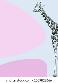 Minimalist banner with giraffe sketch and abstract streamlined shapes, Hand drawn vector illustration