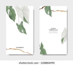 Minimalist botanical card template design, Syngonium podophyllum albo-variegatum plant with golden line on white, pastel vintage theme