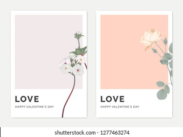 Minimalist botanical valentine greeting card template design, Woolly rock jasmine on light purple and rose on light red