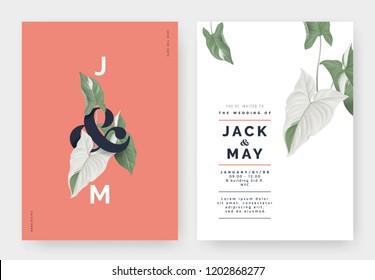 Minimalist botanical wedding invitation card template design, Syngonium podophyllum albo-variegatum plant with lettering on red, pastel vintage theme